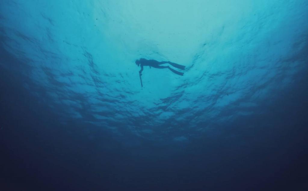 24 NOV | Hálito Azul